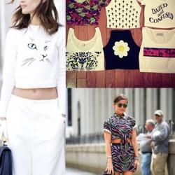 2015 Crop Bluz Modeli
