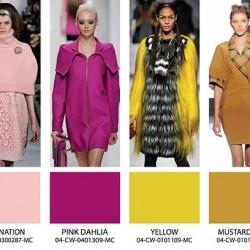 Pembe Mor Sonbahar Kış Moda Renkler